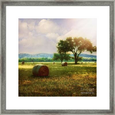 Down In The Valley Framed Print by Tamyra Ayles