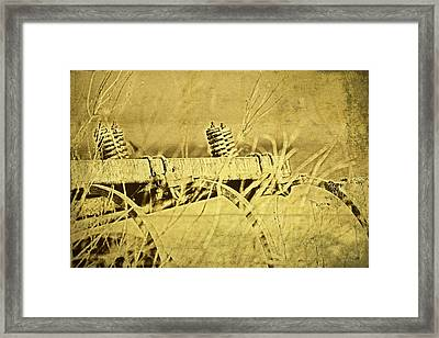 Down On The Farm Framed Print by Tom Mc Nemar