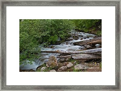 Down The Mountain Framed Print by Robert Pilkington