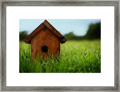 Down To Earth Framed Print by Laura Fasulo