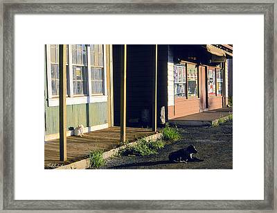 Downtown Hanapepe Framed Print by Nick Galante