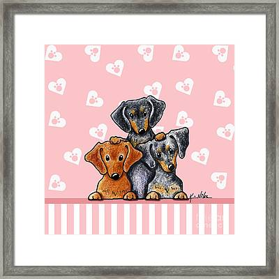 Doxie Trio Framed Print by Kim Niles