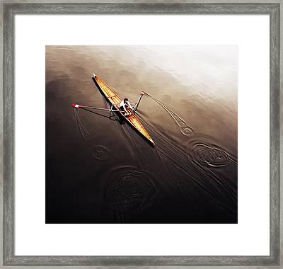 Dragonfly Framed Print by Fulvio Pellegrini