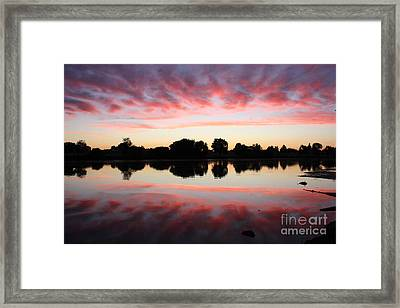 Drama In Red Framed Print by Carol Groenen