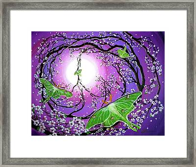 Drawn To The Light Framed Print by Laura Iverson