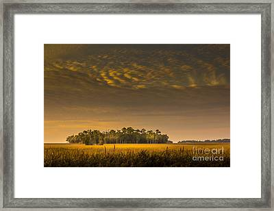 Dream Land Framed Print by Marvin Spates