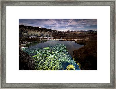 Dream Pool Framed Print by Cat Connor
