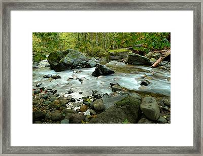 Dreaming In The Water Moss And Rocks  Framed Print by Jeff Swan