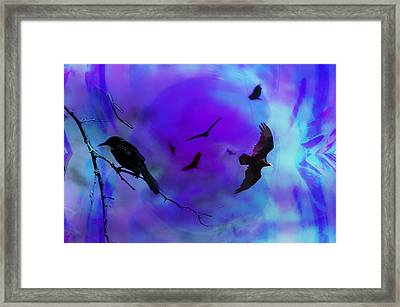Dreaming Of Flying Framed Print by Bill Cannon
