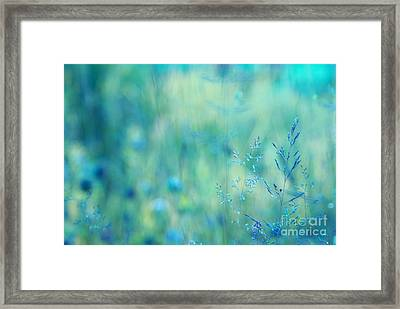 Dreamland - 02-2 Framed Print by Variance Collections