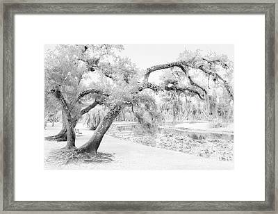 Dreams Without Color Framed Print by Liesl Walsh