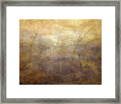Dreamscape Framed Print by Leland D Howard