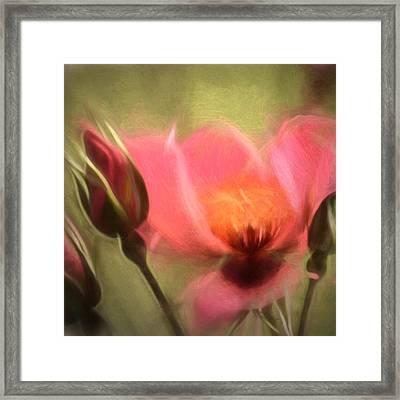 Dreamtime Framed Print by Sharon Lisa Clarke