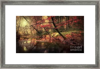 Dreamy Autumn Forest Framed Print by Svetlana Sewell