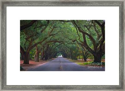 Dreamy Boundry Framed Print by Skip Willits