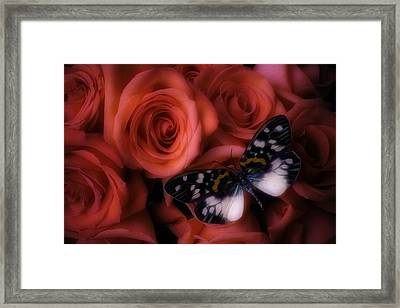 Dreamy Butterfly Framed Print by Garry Gay