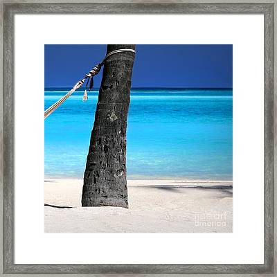 Dreamy Hammock  -  Part 3 Of 3  Framed Print by Sean Davey