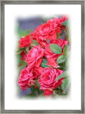 Dreamy Red Roses - Digital Art Framed Print by Carol Groenen