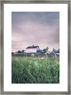 Dreamsville Framed Print by Evelina Kremsdorf