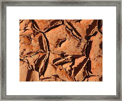 Dried Mud C Framed Print by Mike McGlothlen