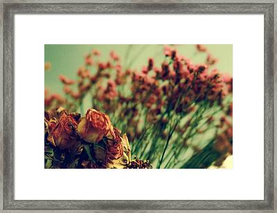 Dried Roses Framed Print by Kendall Tabor