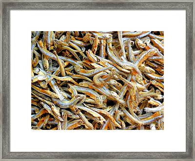 Dried Small Fish 1 Framed Print by Lanjee Chee