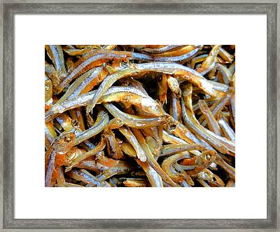 Dried Small Fish  2 Framed Print by Lanjee Chee