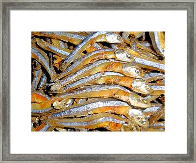 Dried Small Fish 3 Framed Print by Lanjee Chee