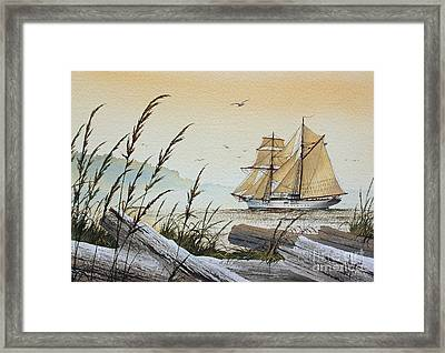 Driftwood Bay Framed Print by James Williamson