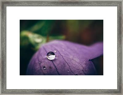 Droplet Framed Print by Tracy  Jade