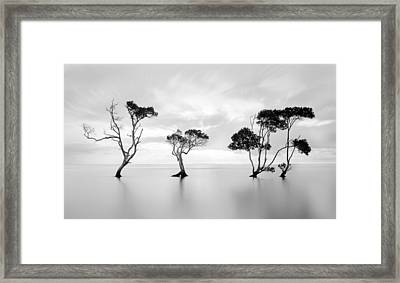 Drowning Not Waving Framed Print by Steven Fudge