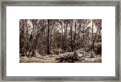 Dry Autumn Landscape Of A Vintage Woodland Framed Print by Jorgo Photography - Wall Art Gallery