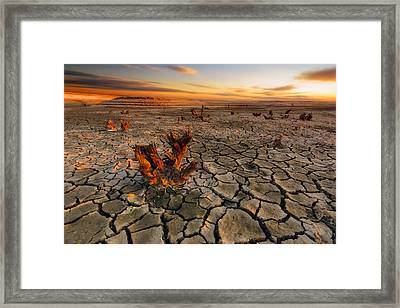 Dry Lake Framed Print by Piotr Krol (bax)