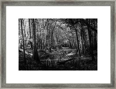 Drying Creek Bed Framed Print by Marvin Spates