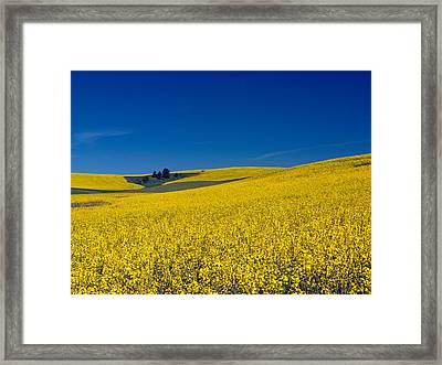 Dt816palouse Framed Print by Leland D Howard