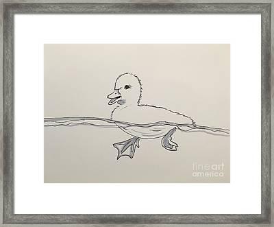 Duckling Framed Print by Kathy Flood