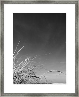 Dune Grass With Sky Framed Print by Michelle Calkins