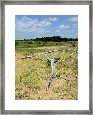 Dune On The Prairie Framed Print by Scott Kingery