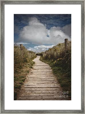 Dune Path Framed Print by Richard Thomas
