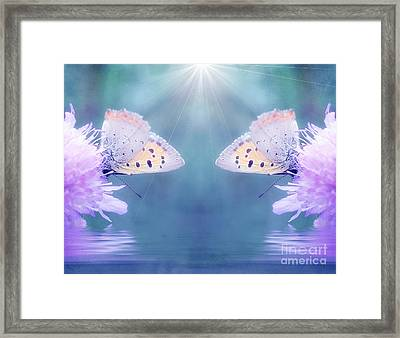 Duo Butterfly Framed Print by SK Pfphotography