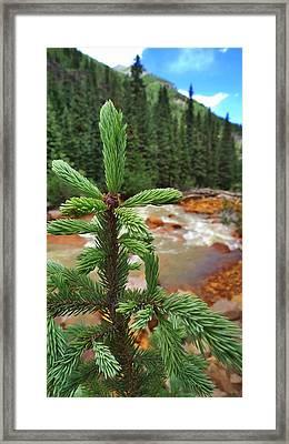 Durango Pass Framed Print by Skip Hunt
