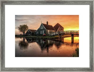 Dutch Morning Glory Framed Print by Reinier Snijders