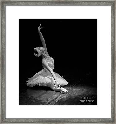 Dying Swan II. Framed Print by Clare Bambers