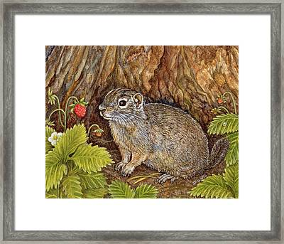 Eagle Creek Wild Strawberry Ground Squirrel Framed Print by Ditz
