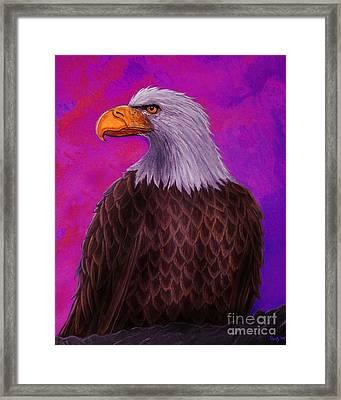 Eagle Crimson Skies Framed Print by Nick Gustafson