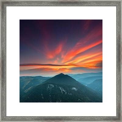 Eagle Eye Framed Print by Evgeni Dinev