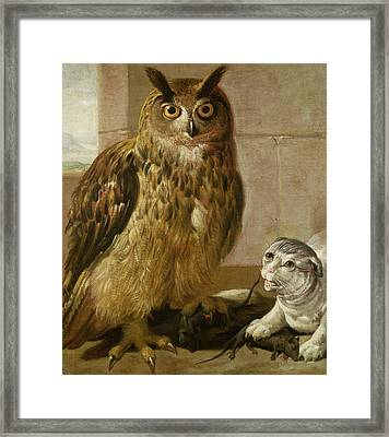 Eagle Owl And Cat With Dead Rats Framed Print by Johann Heinrich Roos