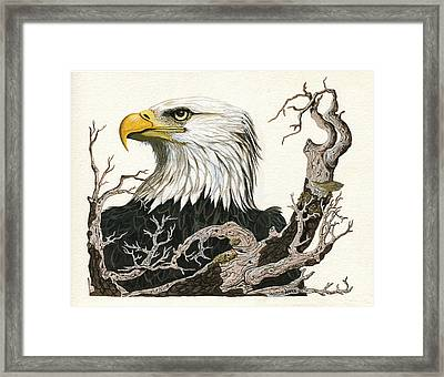Eagle's View - Wildlife Painting Framed Print by Linda Apple