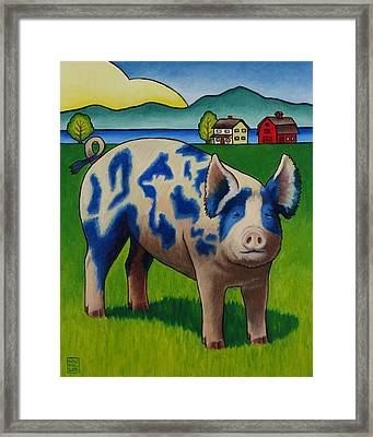 Earl Of Whidbey Framed Print by Stacey Neumiller