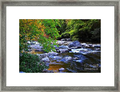 Early Autumn Along Williams River Framed Print by Thomas R Fletcher